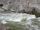 Raging white and green water of Skull Rapid